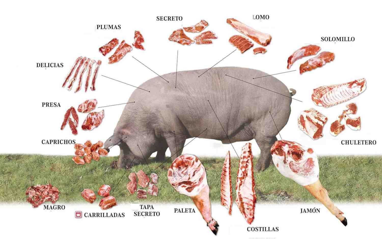 Tipos de carnes | Despieces cárnicos | Comprar embutidos online