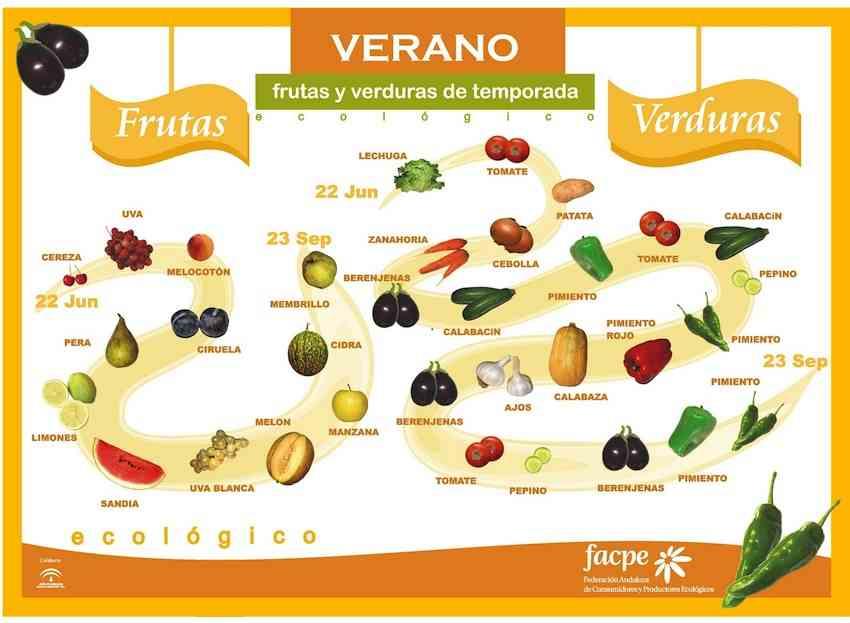frutas y verduras en verano